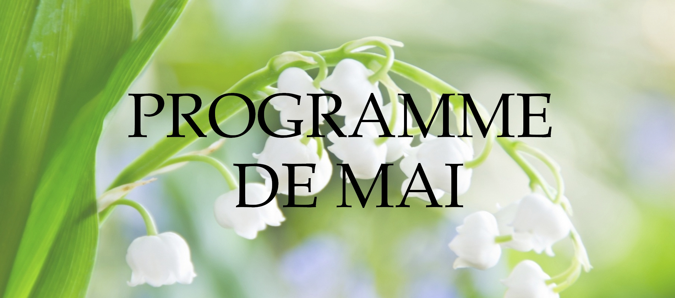 Programme+mai